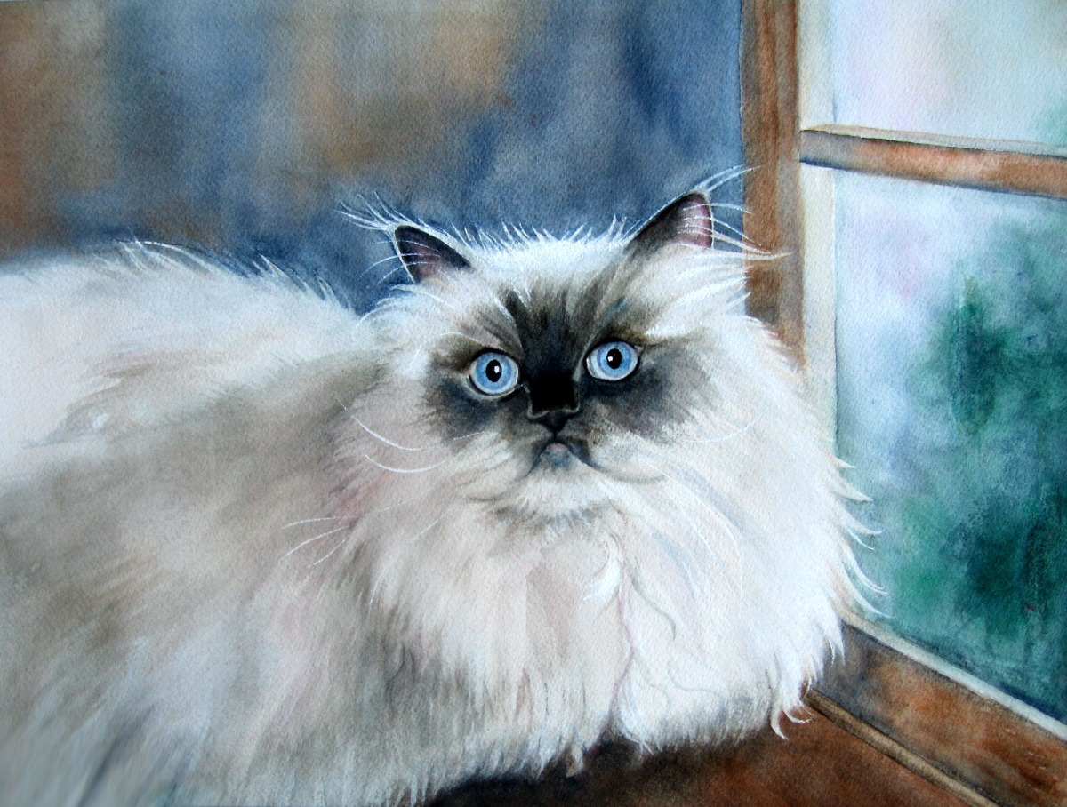 Judy Nunno, max in the window (large view)
