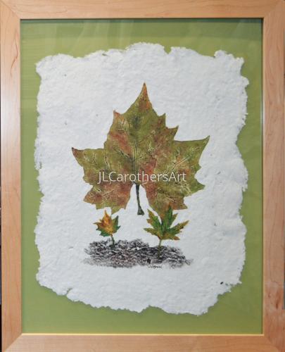 Maple Leaf n Bark
