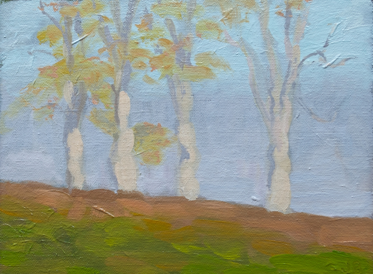 The Four Trees - October 24, 2012, A #3 (large view)