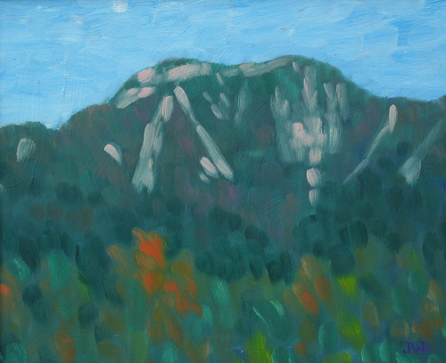 Adirondack Series: Giant from the Ausable Club