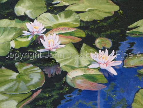 Lily Pads by John J.  Abisch - Fine Art