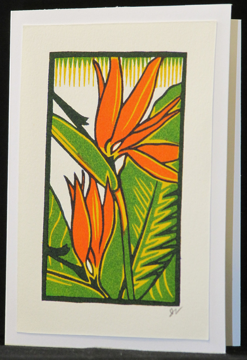 bird of paradise/card (large view)