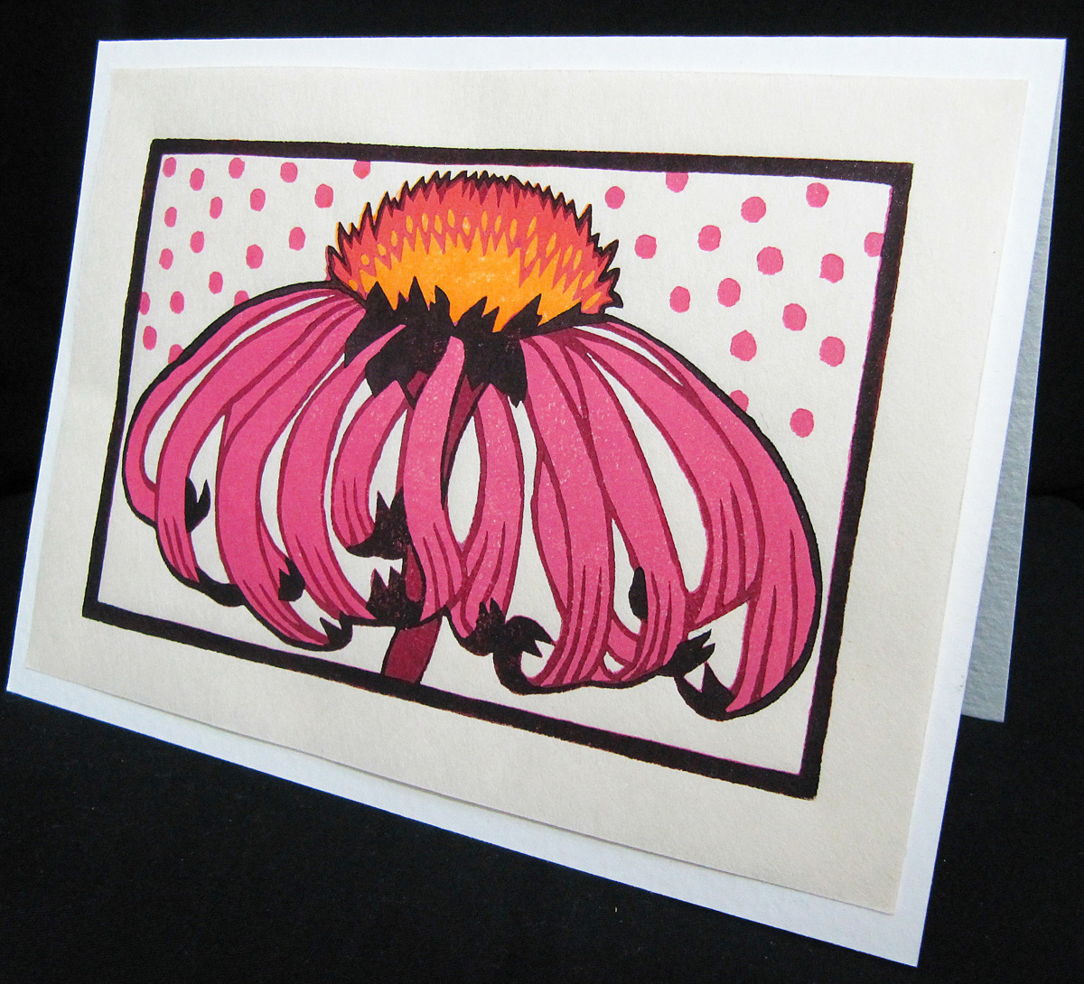 Coneflower (large view)