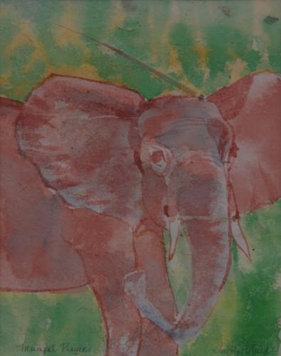 Elephant Glare