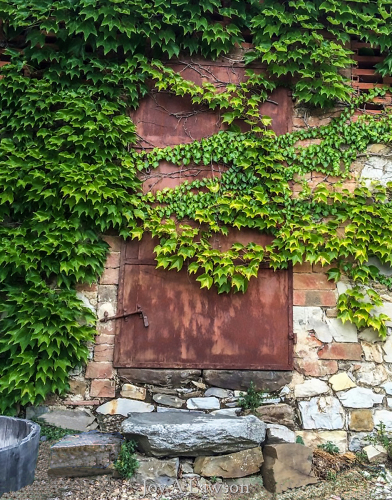 Castelina Winery Door