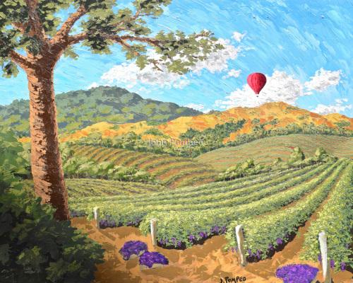Balloon Over Napa