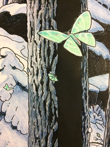 Tapestry #12, The Forest: Luminescent Moth