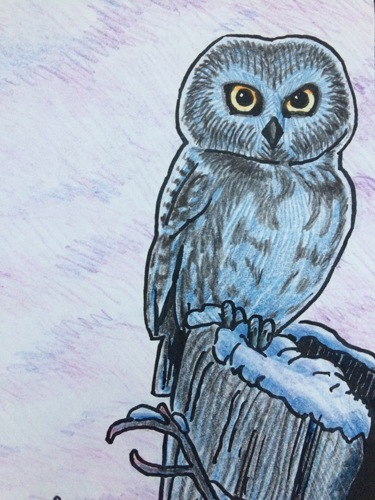 Tapestry #12, The Forest: Little Owl