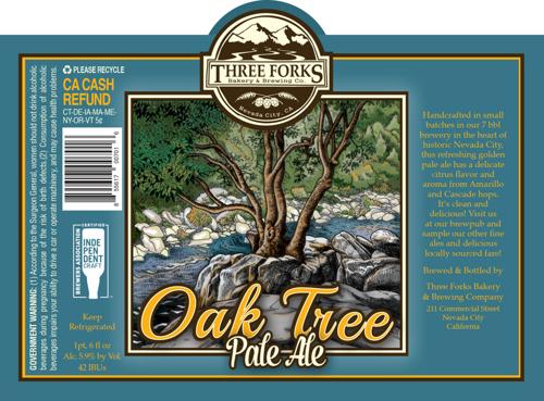 Oak Tree illustration