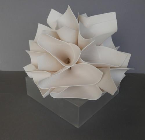 Porcelain Petals