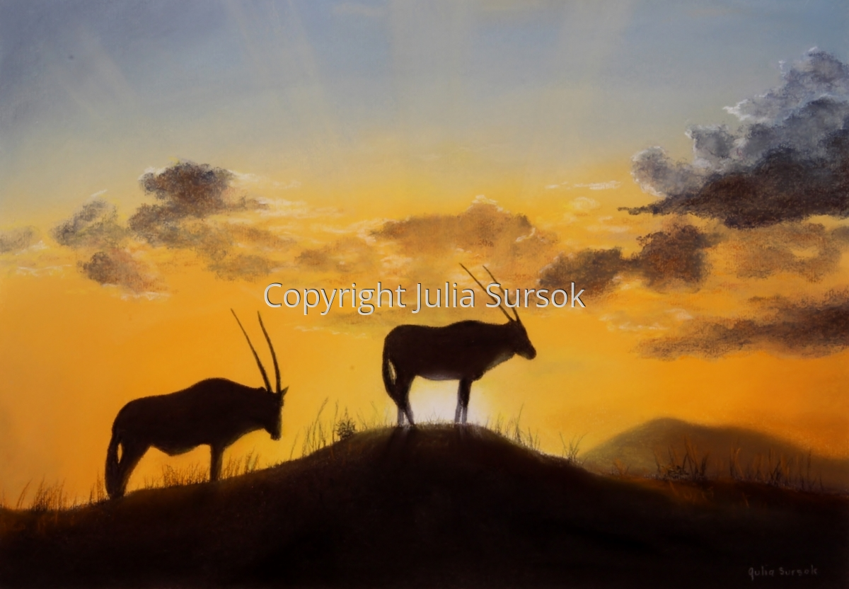 Namibian Silhouette (large view)
