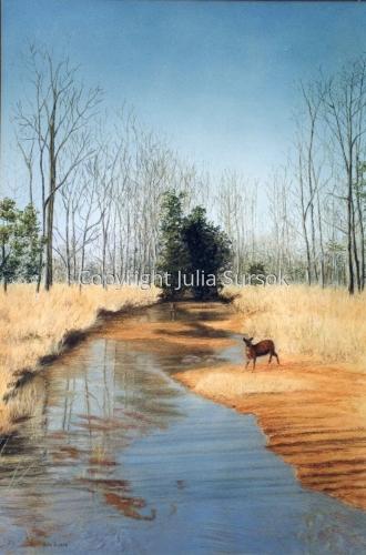 A Winter's Tale by Julia Sursok