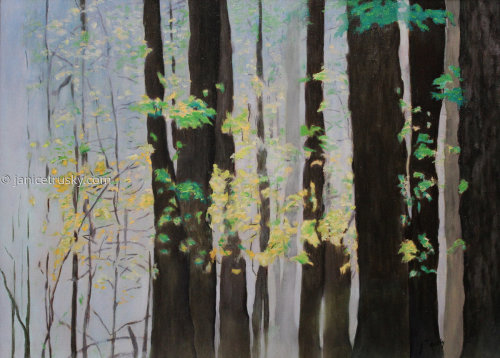 Forest Study II