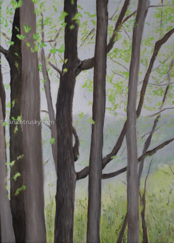 Forest Study IV