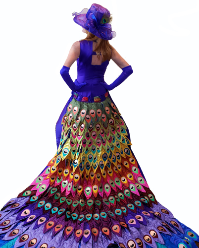 The Peacock Dress