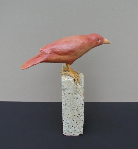 Sienna Bird