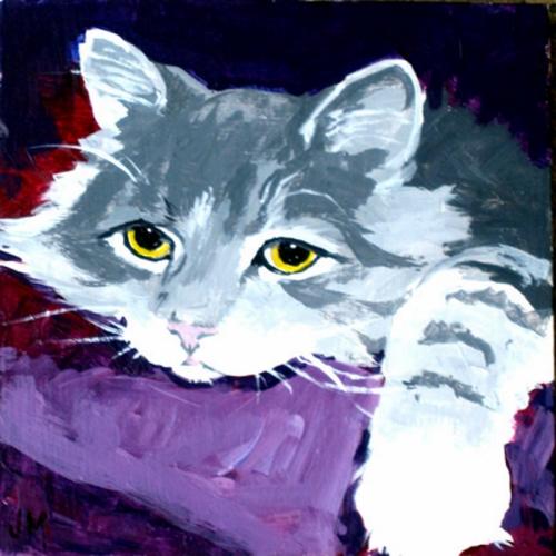 *Ryan's cat 1.jpg
