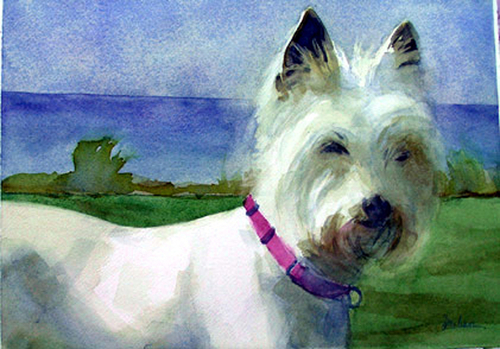 Risings Westie