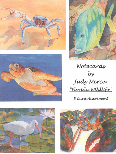 Notecards - Florida Wildlife (large view)