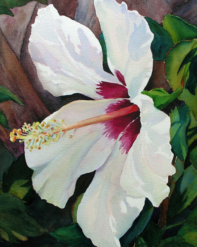 White Wonder by Judy Mercer