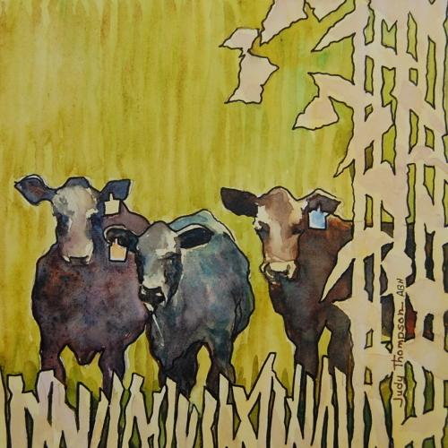 Cow Pokes