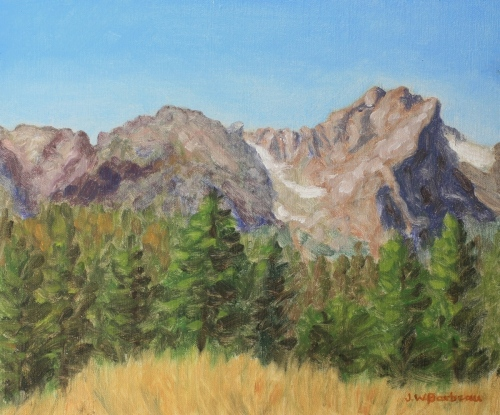 Rocky Mountain Meadow View