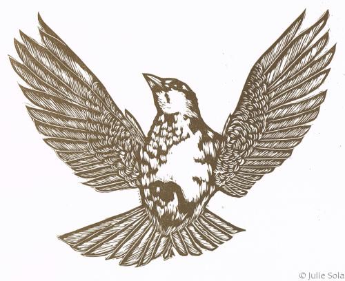 Soarrow