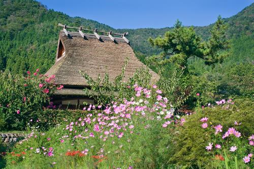 Miyama Farmhouse
