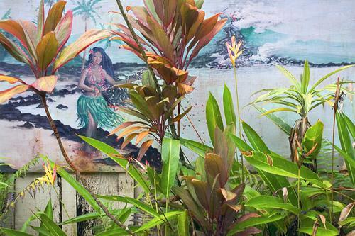 Pahoa Mural, Hawaii