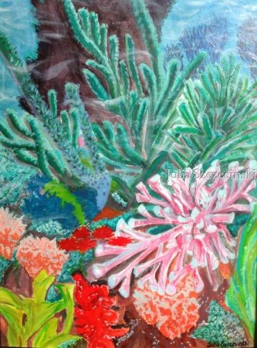 Piranha's Playground  by Julia Anne Colette Szczecinski