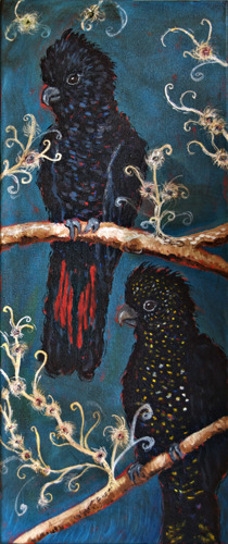 Cockatoo -blue