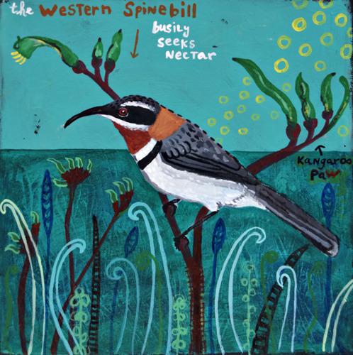 Western Spinebill