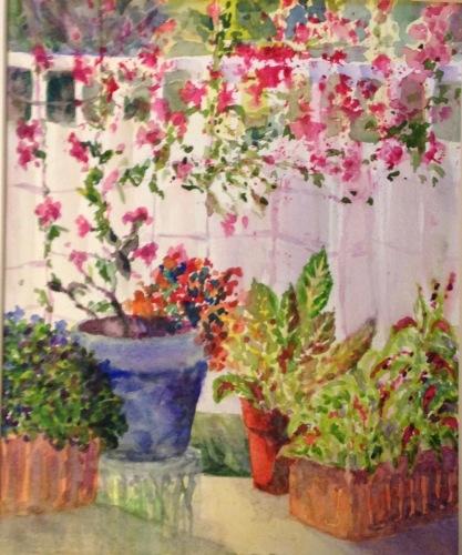 Mandevilla Garden