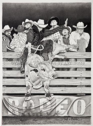 Serious Fun Rodeo