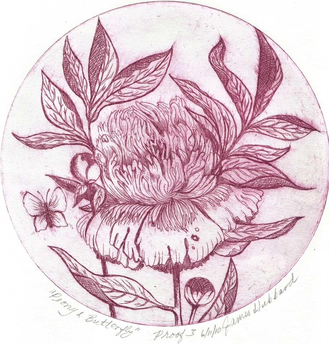 Peony & Butterfly (2010) (large view)