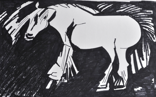 Horse 23