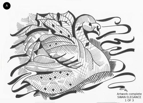 Swan Elegance 1