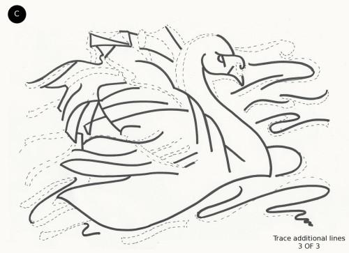 Swan Elegance 3