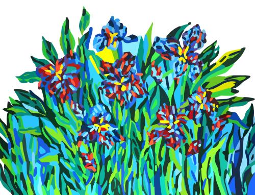Hybrid Irises