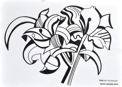 Iris Splendour
