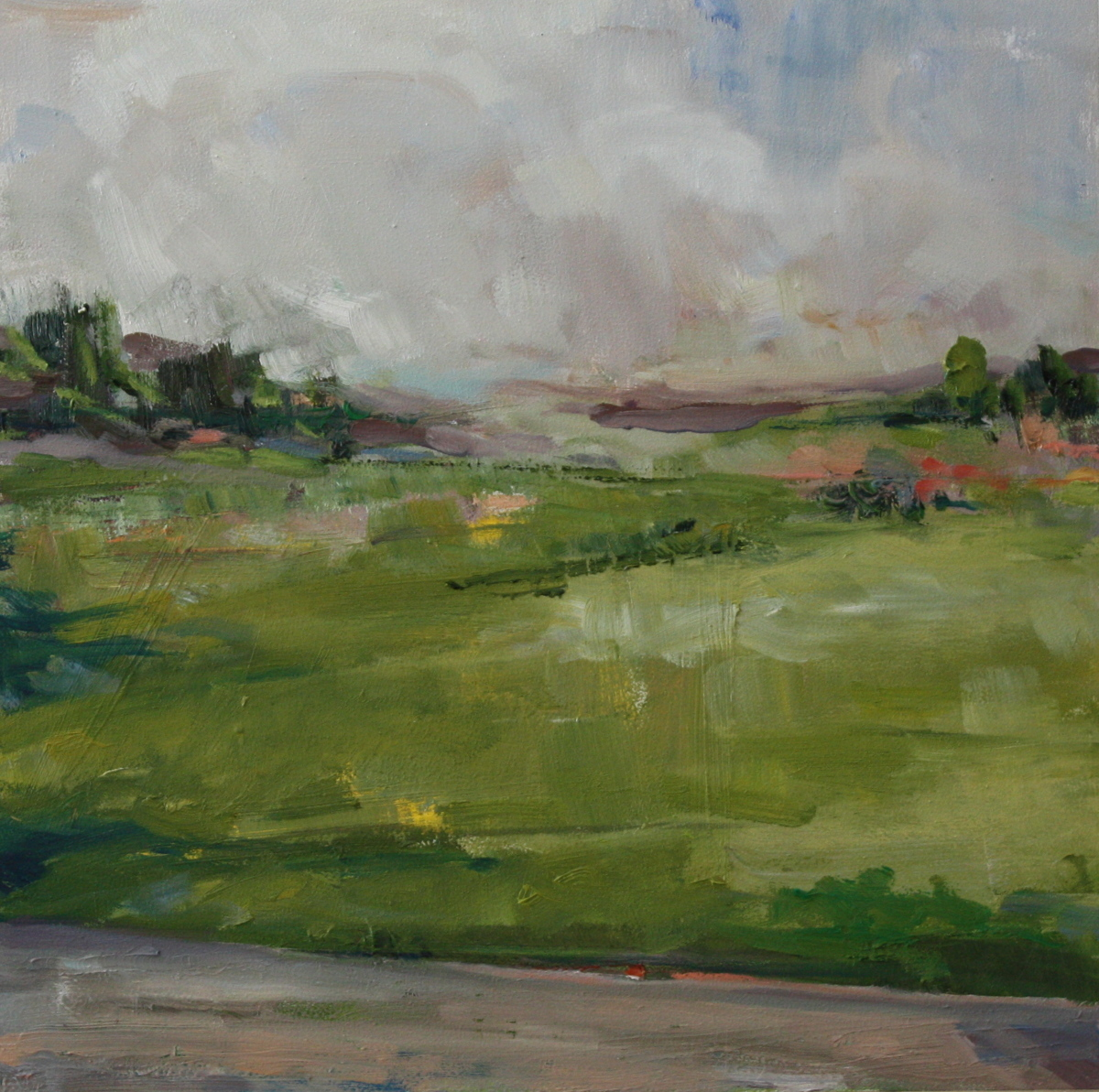 Roadside Field (large view)