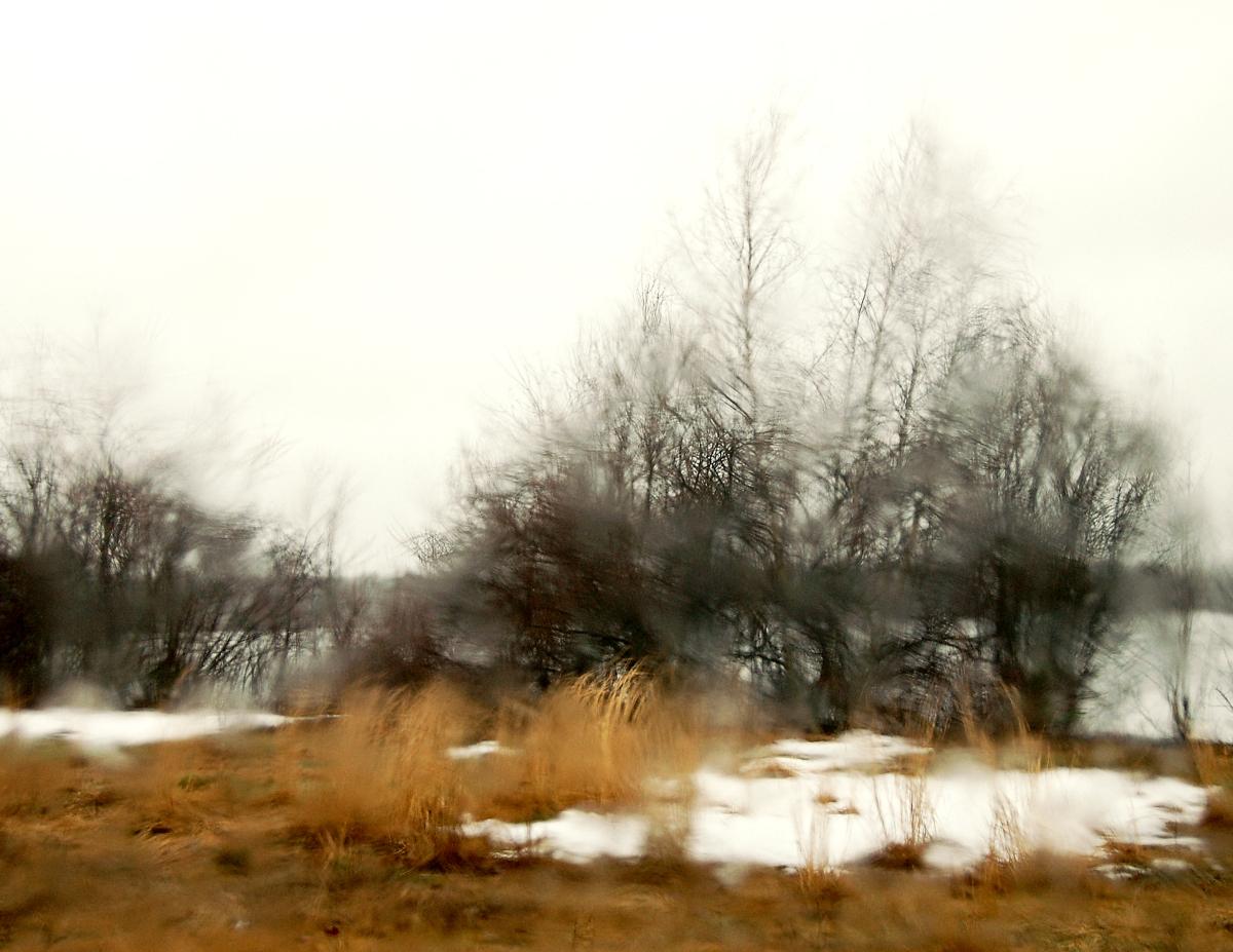 January Rain (large view)