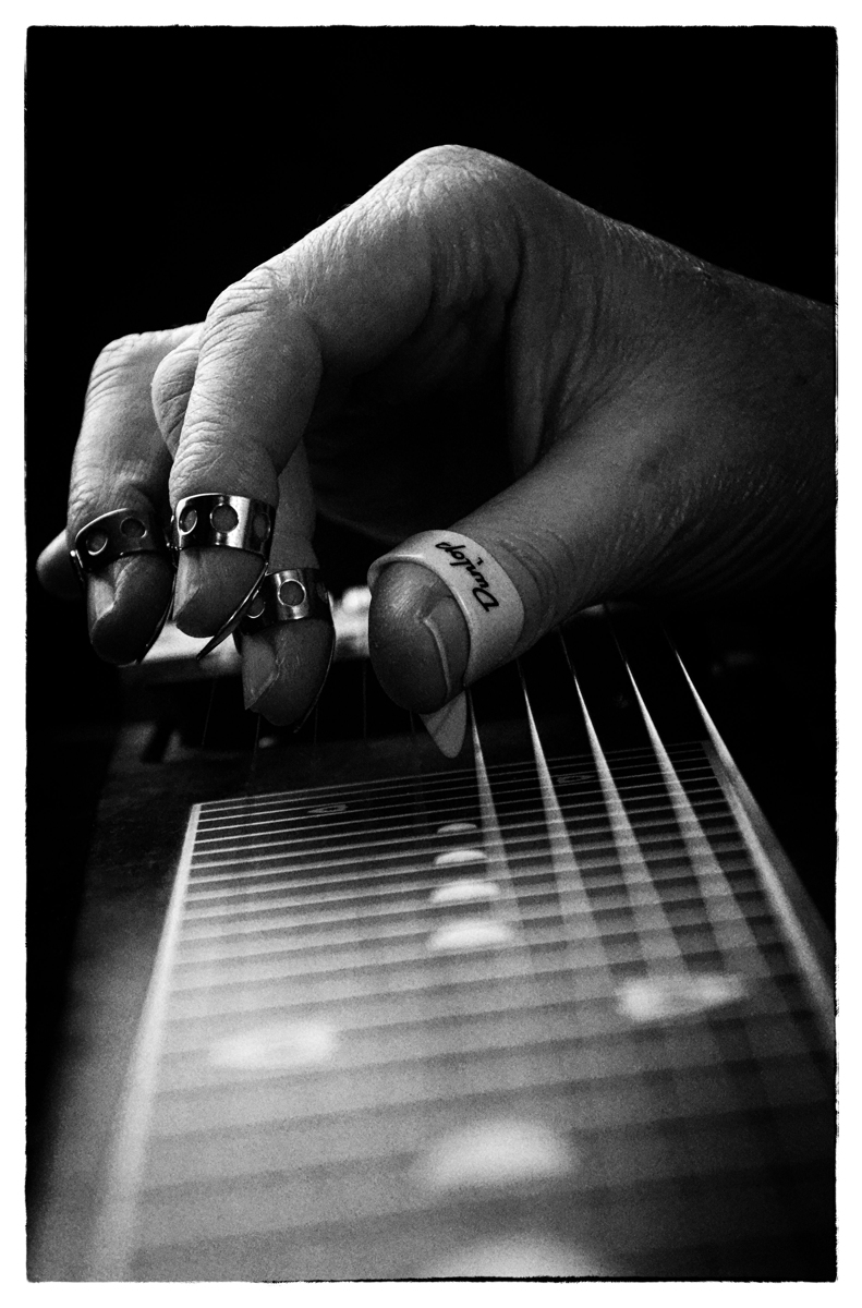 Pedal Steel (large view)