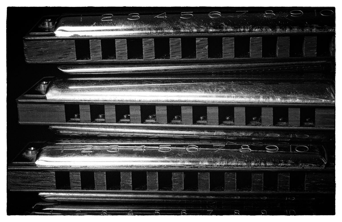 Harmonicas (large view)