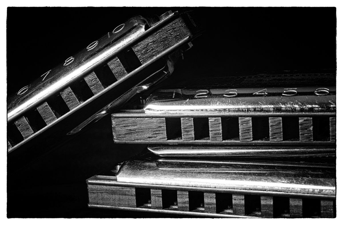 Three Harmonicas (large view)