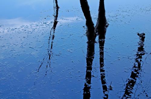 Watermarks by Karen Callan