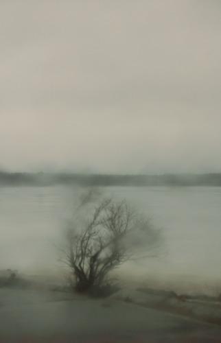 Windswept by Karen Callan