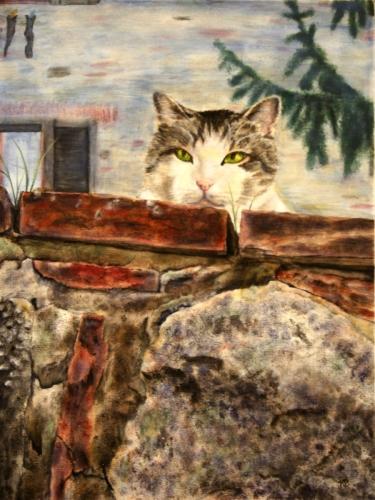 ITALIAN CAT ON WALL by Karen Peterson