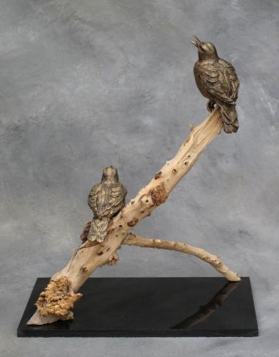 Bronze Meadowlarks