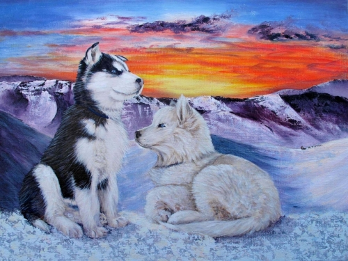 DOG SLEDDING DREAMS by Karen Peterson